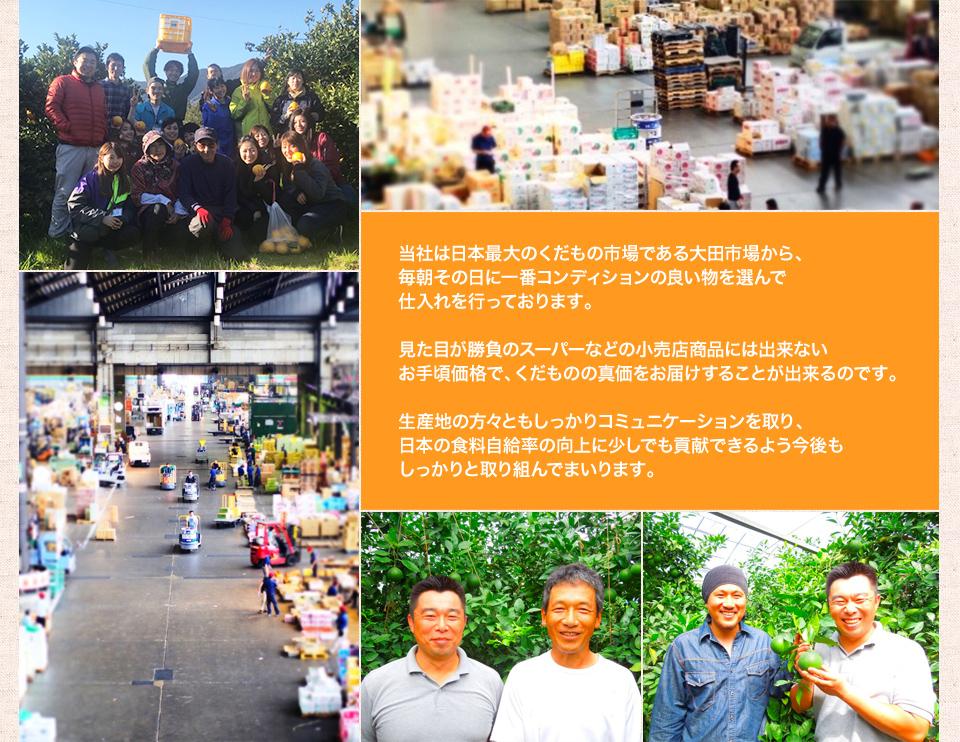 当社は日本最大のくだもの市場である大田市場から、毎朝その日に一番コンディションの良い物を選んで仕入れを行っております。
